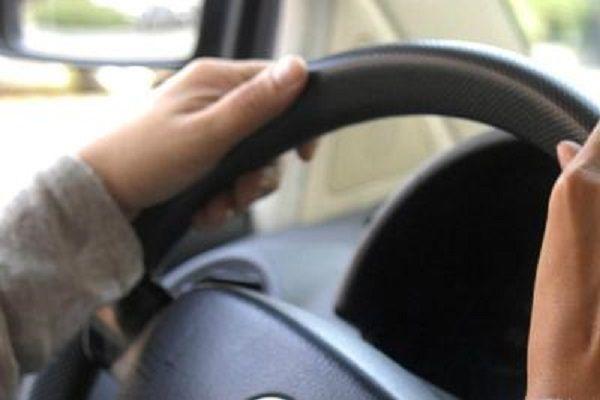 cms_15145/guida_volante_auto_fg.jpg