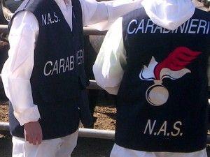 cms_1310/carabinieri-nas-blitz-in-cento-case-di-riposo-300x225.jpg