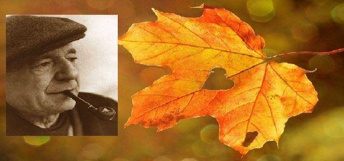 cms_18918/autunno-frasi-famose.jpg